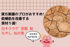漢方&薬膳のプロがオススメする乾燥肌を改善する食材5選!